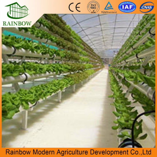 Incredible China Hydroponics And Commercial Greenhouse For Desert And Home Interior And Landscaping Oversignezvosmurscom