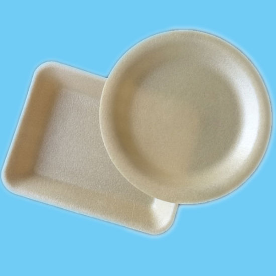 White Various Use Disposable PLA Foaming Tray