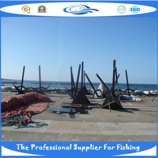 Expert Manufacturer of Fish Cage/Sea Cages (DSC03684) pictures & photos