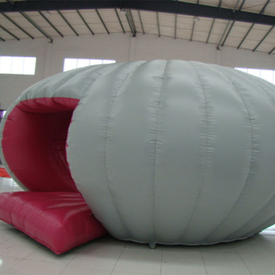 Giant Inflatable Round Bouncer for Children and Adult pictures & photos