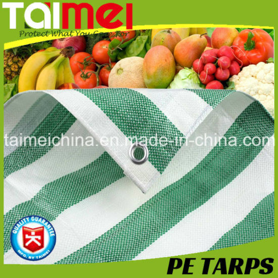 Stripped PE Tarpaulin Fabric with Customizable Colour for Fruit & Vegetable Cover & Chicken Stock Farming pictures & photos