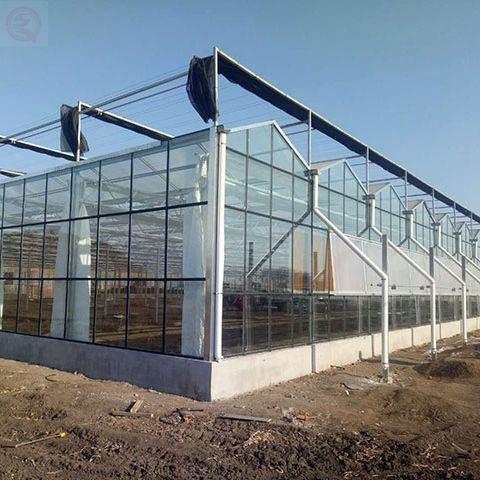 Multi-Span Flower/ Vegetable Glass Green House