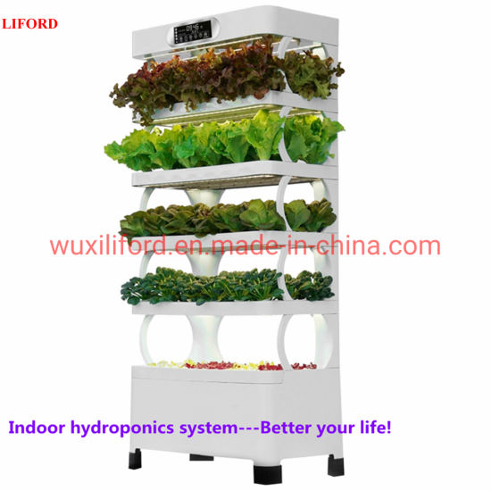 New Designed Hydroponics Growing System Pot Plant for Indoor Decorate