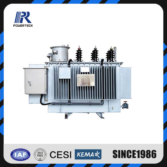 11kv/24kv/33kv Line Automatic Voltage Regulator with 32 Steps