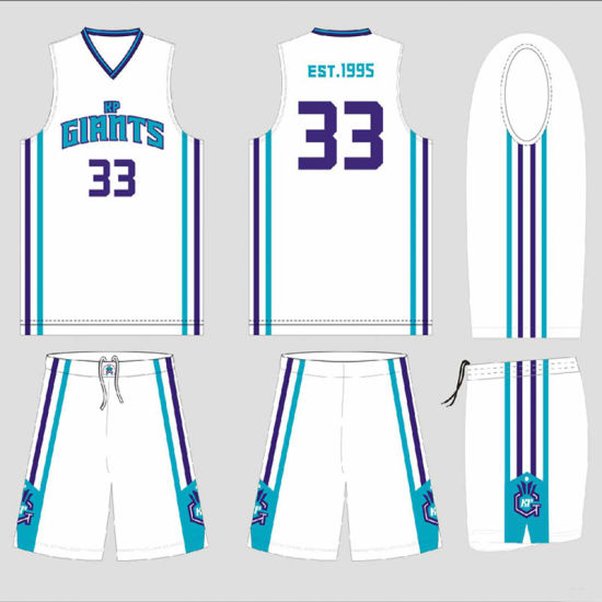 Charlotte Hornets Style Player Basketball Shirt for Club pictures & photos