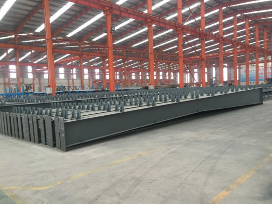 Professional Design Steel Warehouse Building (CH-102)