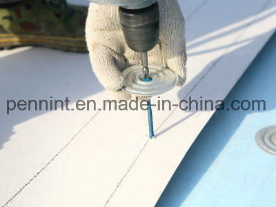 Polyester Reinforcement White Tpo Waterproofing Membrane pictures & photos