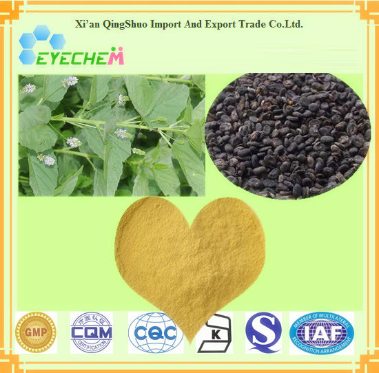 Health Care Products Ingredients Natural Malaytea Scurfpea Fruit Extract / Psoralea Corylifolia / 5% Psoralen