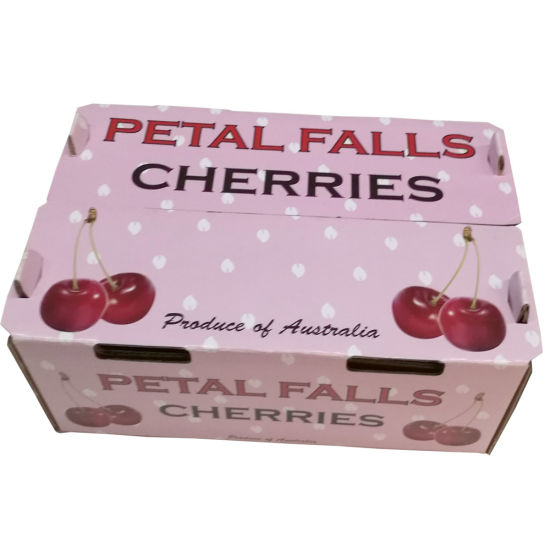 Prime Quality Hot Sale Paper Packaging Box for Cherries Packing