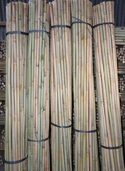 Bamboo Pole pictures & photos