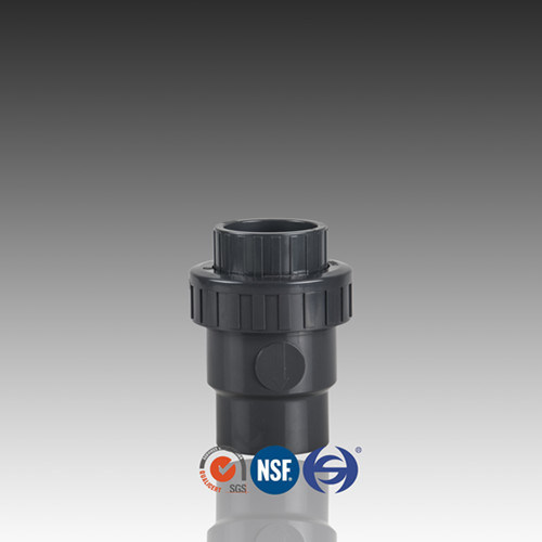DIN Standard PVC Check Valve with Single Union pictures & photos