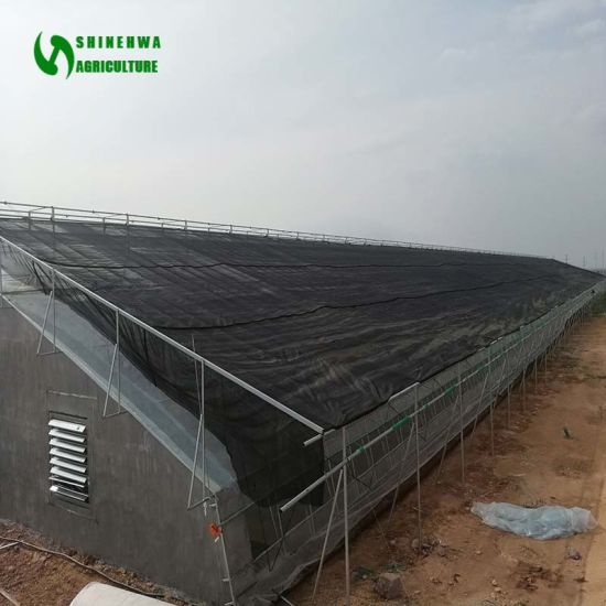 Citaten Hoop Research : China agricultural vegetable tunnel hoop greenhouse with shading