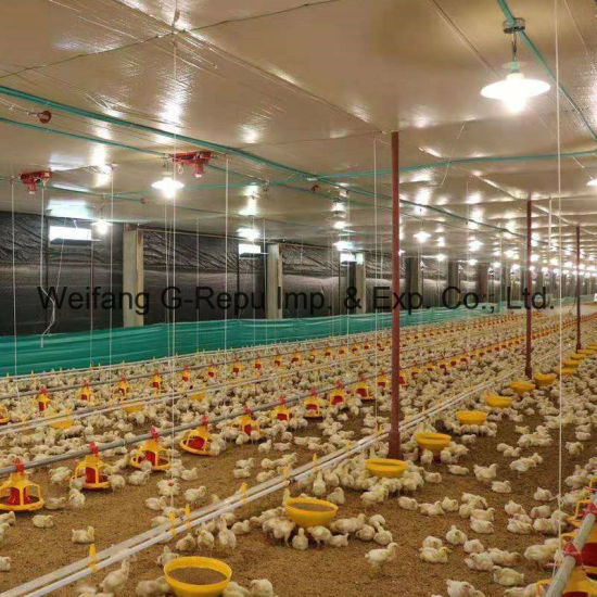 China Automatic Poultry House Feeding Pan Equipment for Broiler