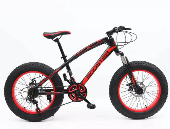 26 Size Fat Tyre Mountain Bicycle with 4.0 Tire Bike
