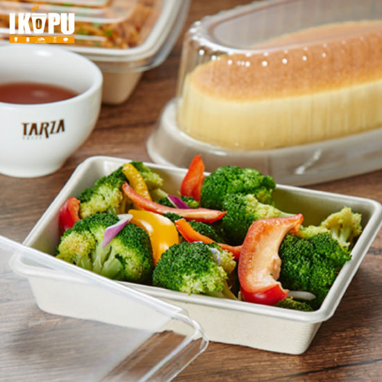 Salad Plate Sandwich Tray Pulp Tableware with Anti-Fog Lid pictures & photos