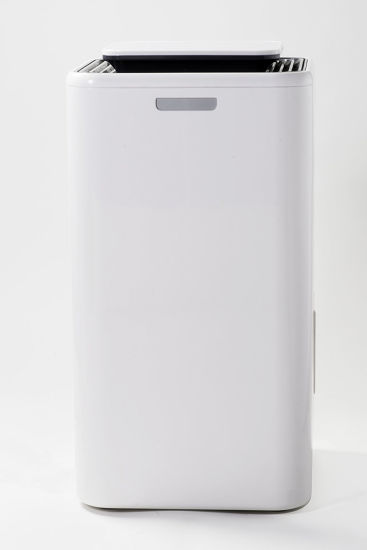 10 L/Day Home Use Moisture Absorber Air Dehumidifier For Bedroom