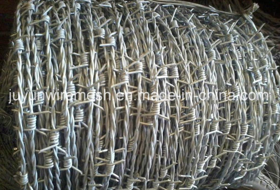 Bwg16 Single Electric Galvanzied Barbed Wire (Anping Factory) pictures & photos