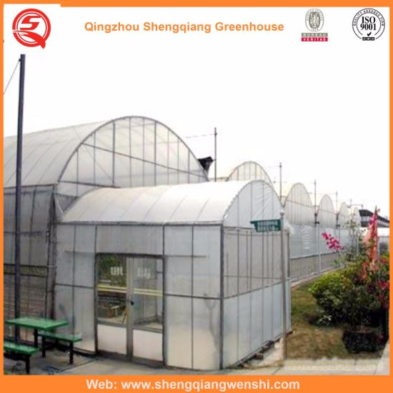 Flower/Fruit/Vegetables/Garden Growing Polyethylene/Plastic Film Greenhouses with Hydroponic Systems Price
