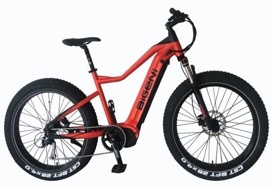 26 Inch Fat Tyre 48V1000W Middle Motor MTB Electric Bike