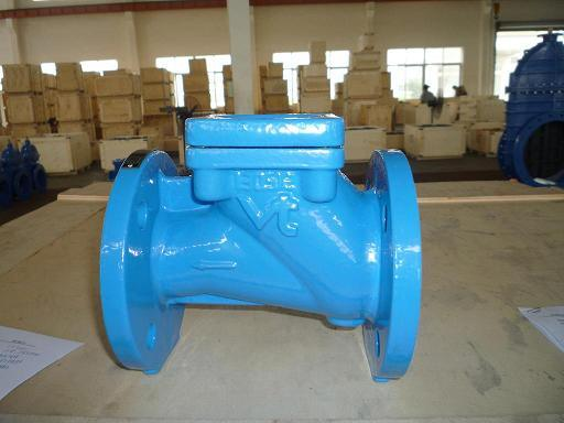 The Flanged Ball Check Valve