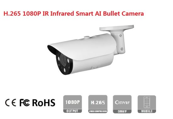 Fsan 1080P Human Car Detection Smart Ai Intelligent Metal Bullet IP Camera