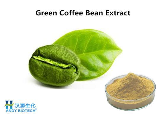 Food Additive Green Coffee Bean Extract Powder China Coffee Bean