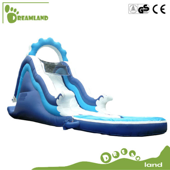 Good Quality Inflatable Jumping Bouncer/ Bouncy Castle pictures & photos