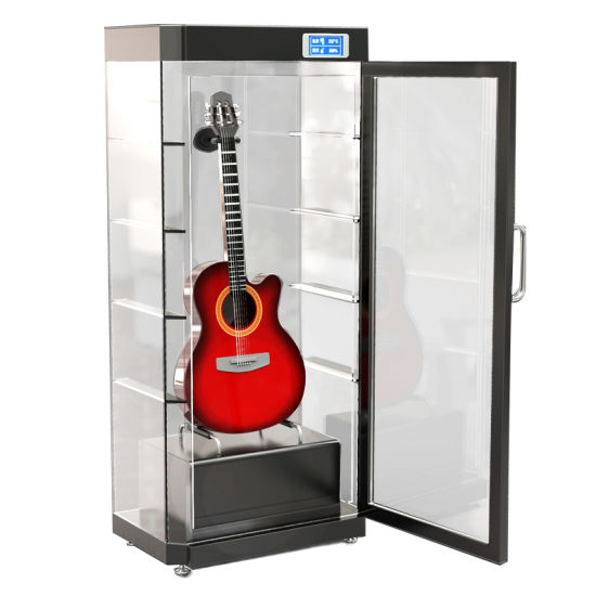 Electronic Dry Cabinet Dehumidifier For Guitar Violin Musical Instrument