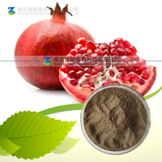Ellagic Acid / Pomegranate Plant Extract (CAS: 476-66-4) pictures & photos