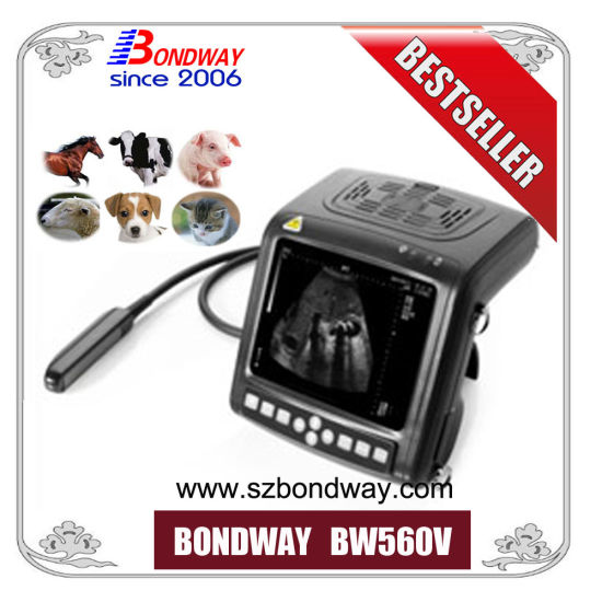 Ultrasound Machine Veterinary Ultrasound Scanner, Vet Ultrasonic Scan Machine, Ultrasound for Small Animals, Farm Animal or Large Animal, Bcf Ultrasound