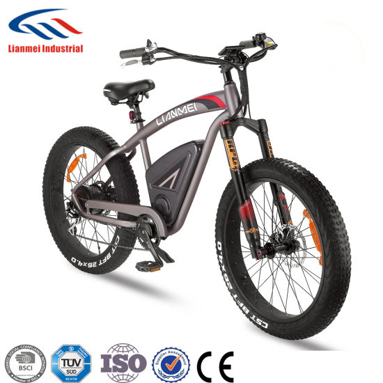 2018 New Style Electric Bike Electric Bicycle Strong MTB Bike Lmtdf-42L