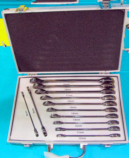 12PCS Stable Gear Wrench Set in Plastic Box (FY1012B3) pictures & photos