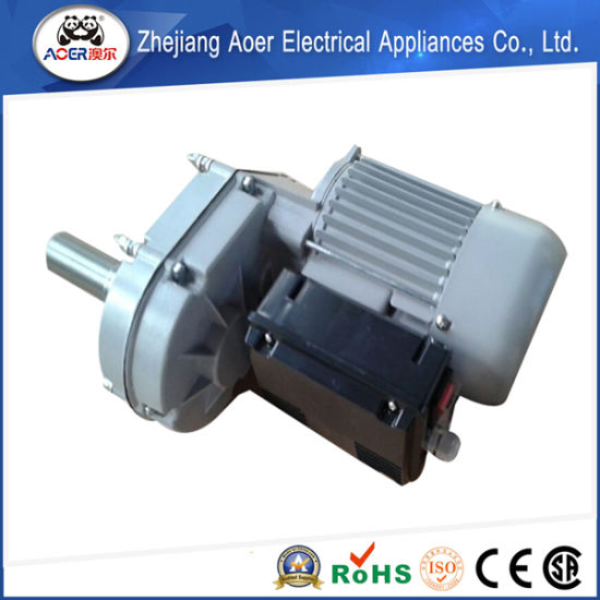 Sophisticated Technology Less Expensive and High Quality Goods Distinctive Low Rpm AC Gear Motor pictures & photos