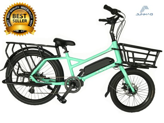20/24inch 36V250W MID Drive Electric Bicycle Lady Lithium Power Battery with Ce