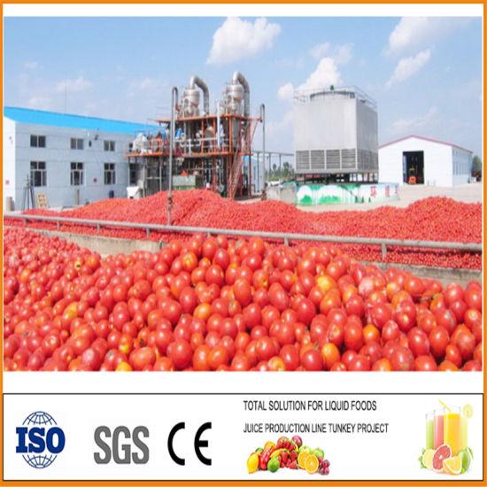 Tomato Ketchup Mixing Production Line Ketchup Making Production Line Making Processing Machine Sauce Filling Machine Paste Sauceproduction Line