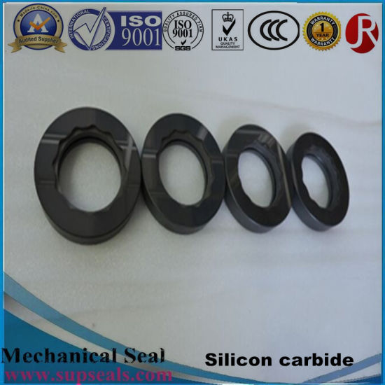 Silicon Carbide Ceramic Seal Rings/Faces for Mechanical Seal