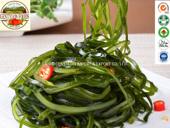 Factory Supply Machine Dried Cut Kelp, Machine Dried Laminaria Seaweed Shredded pictures & photos