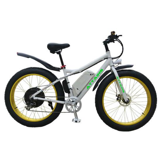 China Hot Sale 26inch Powerful Motor Mountain Fat Tire Electric Bike