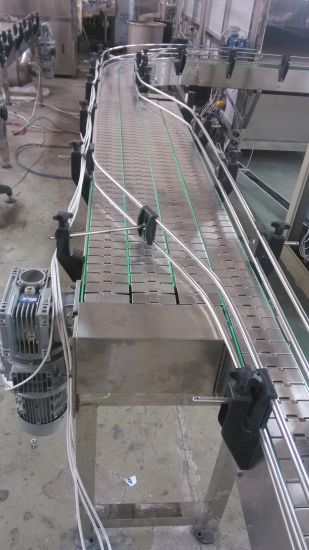 Stainless Steel Conveyor pictures & photos