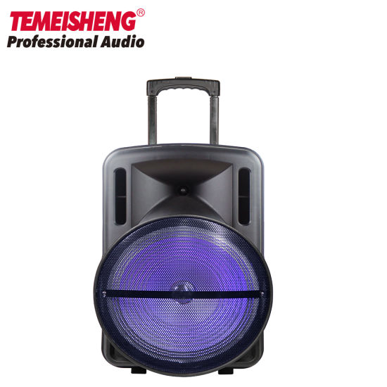 15 Inch Battery Powered PA Professional Trolley Wireless with Bluetooth Speaker