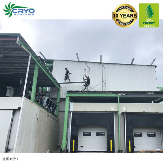 20% Power Saving Fruits Sellers New 10 X 20 Walk in Cooler Bitzer Cold Room for Banana Fruit Pulp