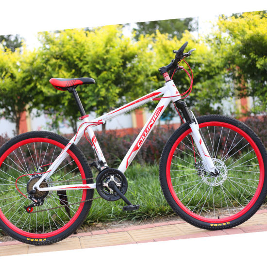 Wholesale China Manufacturer 26 Inch Mens Women Lady Carbon City Road Race Dirt Bicycle Mountain Bike for Adult