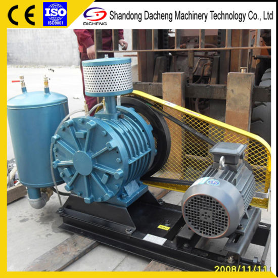 China Dh-25s Durable Rotary Vane Type Blowers for Water