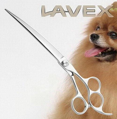 Fashion Pet Dog Grooming Scissor pictures & photos