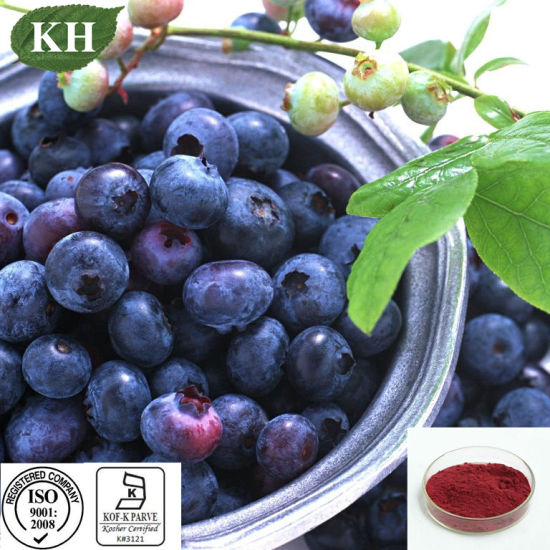 Protecting Eyevision 30% Polyphenols Blueberry Extract pictures & photos