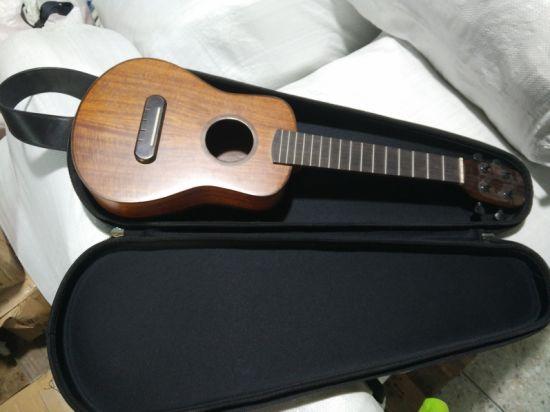 Shakeproof EVA Guitar Bag with Molding Tray EVA Case