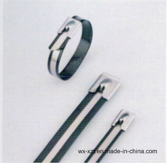 f7df3496dce4 ASTM A240 AISI 301 Ball-Lock Stainless Steel Polyester Coated Cable Ties