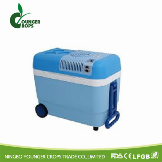 Portable Cooler Box pictures & photos