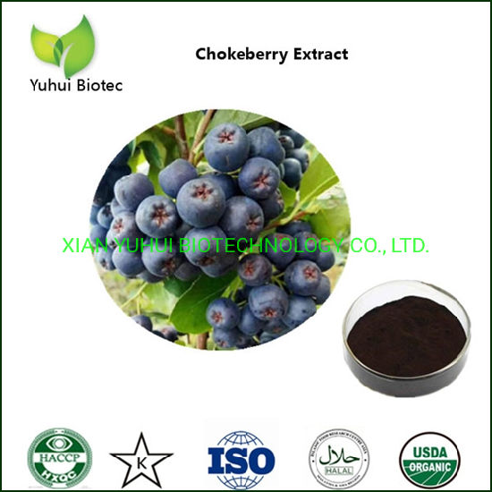 Sorbus Pohuashanensis Aronia Crude Extract Anthocyanins 1-35% HPLC pictures & photos