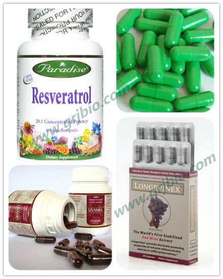 Natural Resveratrol 98% Powder From Giant Knotweed Root Extract pictures & photos